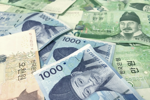 South Korean Central Bank Sets Up A CBDC Advisory Group for Digital Won